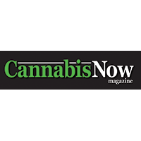 cannabis_now