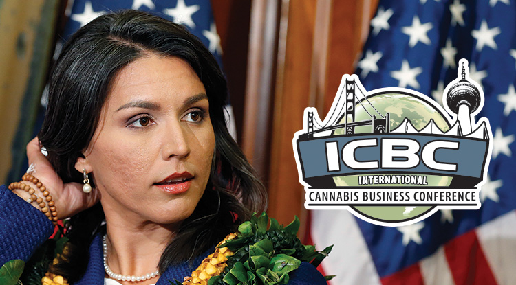 Image result for tulsi gabbard images