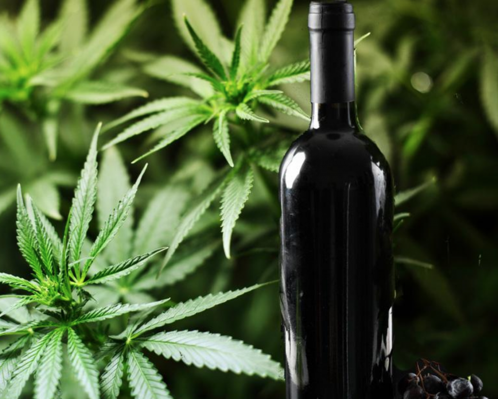 marijuana and wine