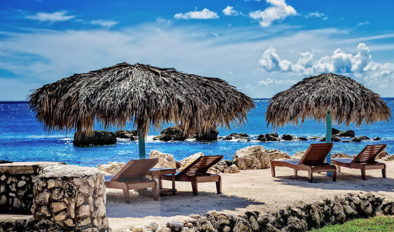 Forbes: Jamaica's Coral Cove Cannabis Retreat Is a Hidden Treat