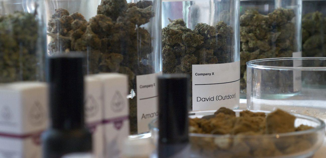 Company X cannabis