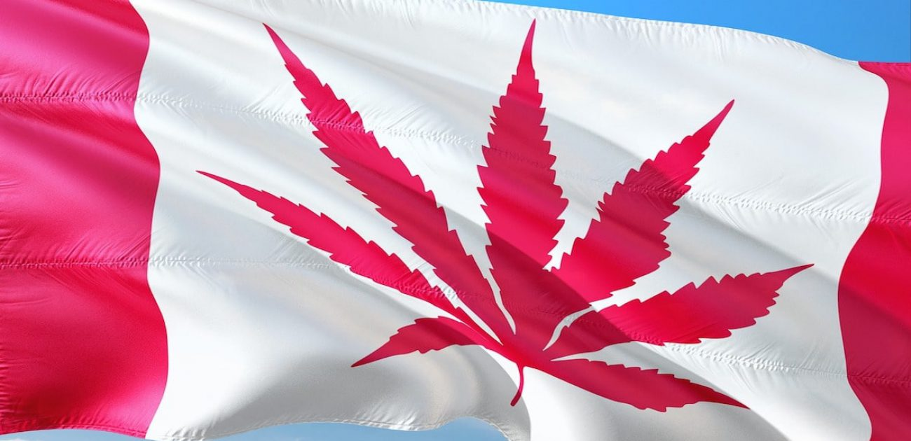 Canadian flag cannabis leaf