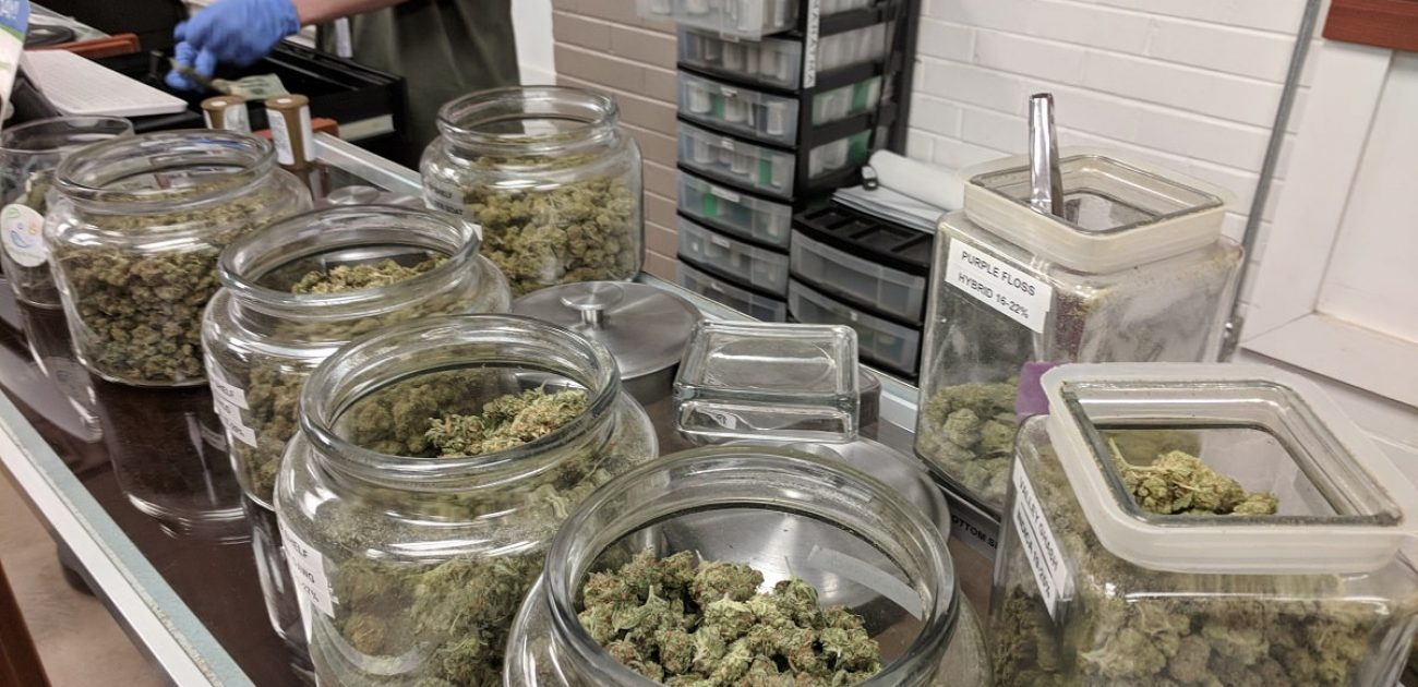 cannabis dispensary employee budtender